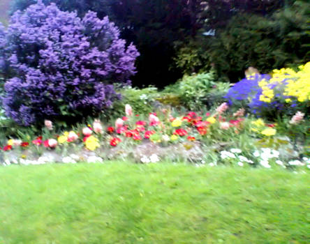 Small park pic 3