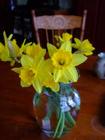 Daffodils on the Kitchen Table by cold-xx
