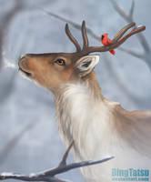 Merry Christmas! by BingTatsu