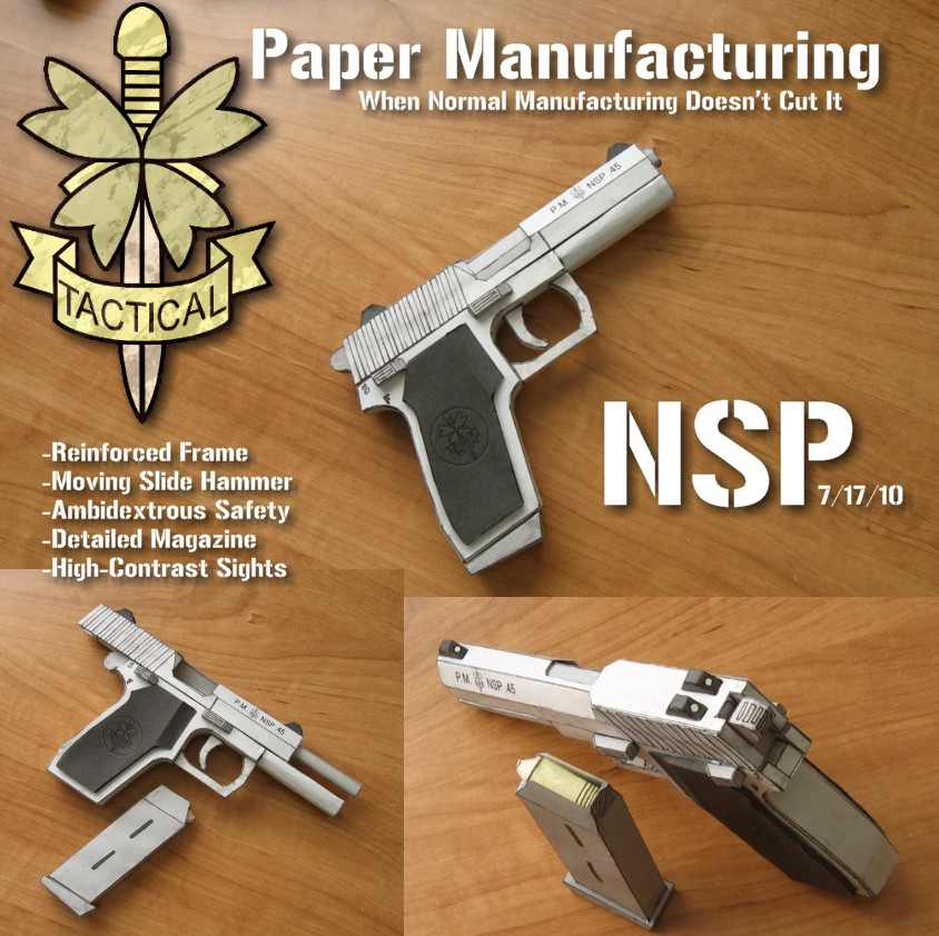 PM NSP by Hoborginc