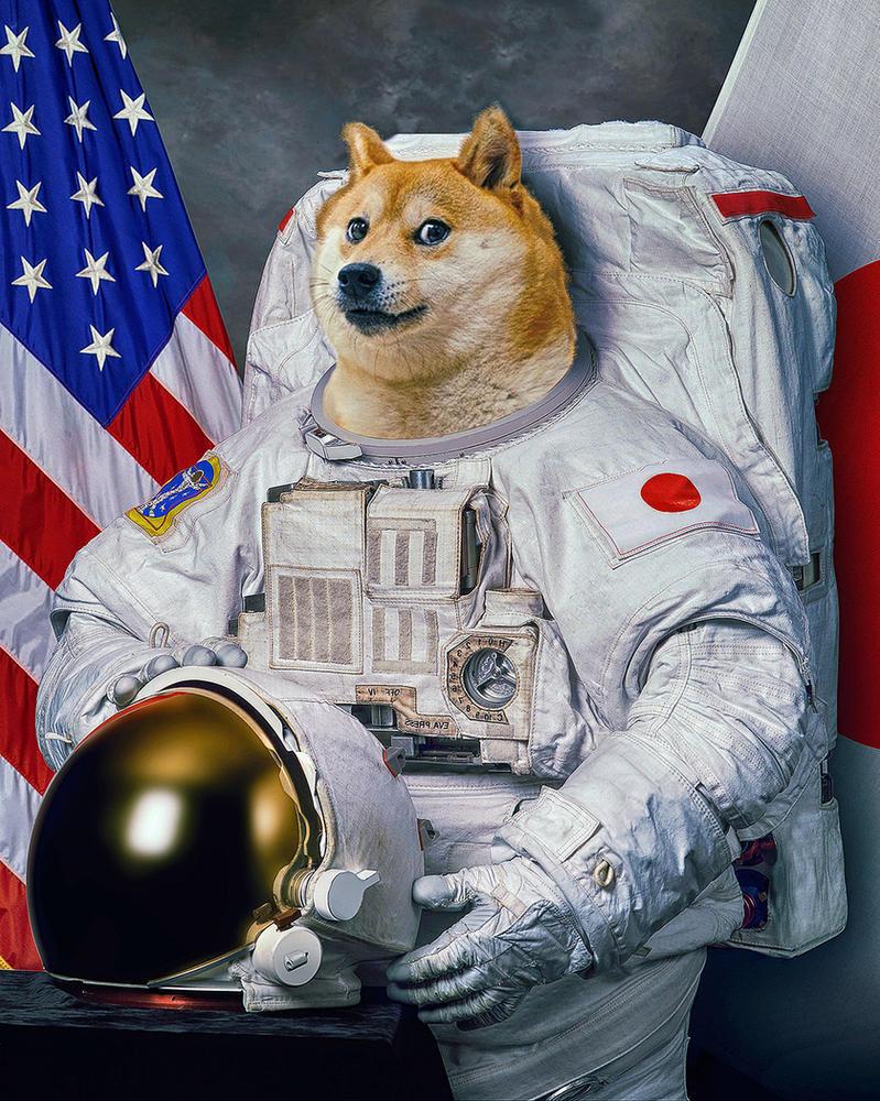Doge by ArchWorks