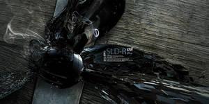 SLD-R 08