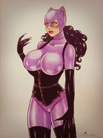 catwoman for sale US$70 by sidneydesenhus