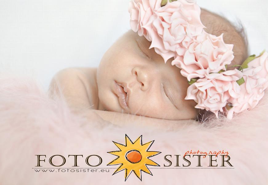 fotosister's Profile Picture