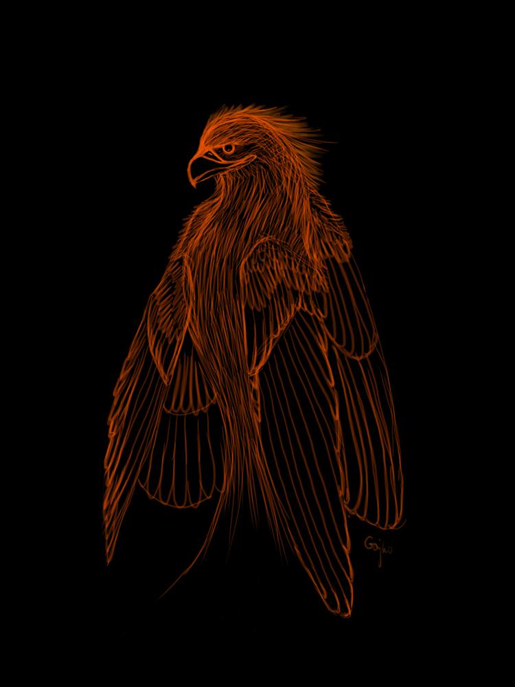 Sketchy Phoenix by Gajko