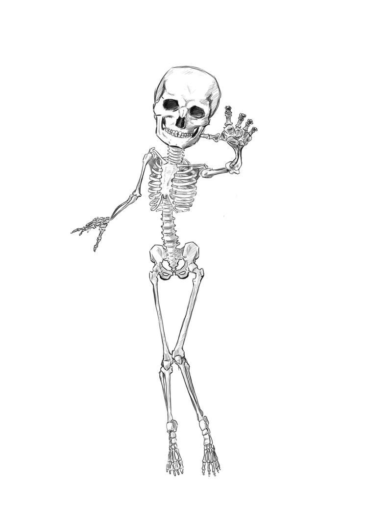 Stylized Skeletal Study by Genesis199