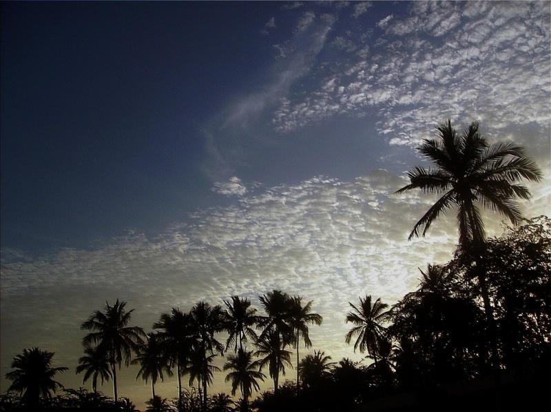 Touching the sky by Naraika