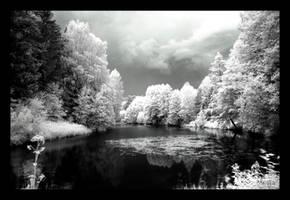 bad weather by StarTigerOne