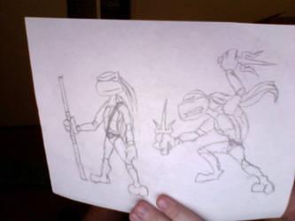 Donatello and Raphael by LegendaryFrog