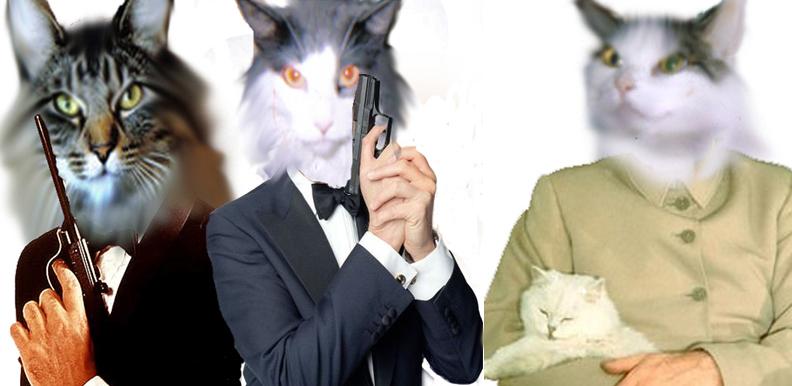secret agent cat by pyromaniac1992