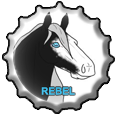 Rebel BottleCap! by MissDudette