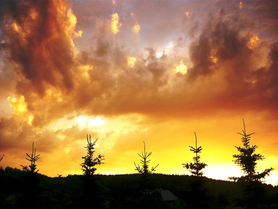 Le ciel au miel by LaRoseDePetitPrince