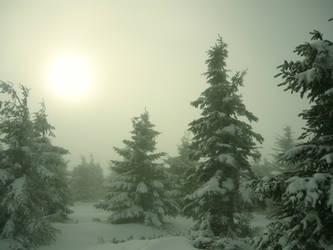 Misty mountains by LaRoseDePetitPrince