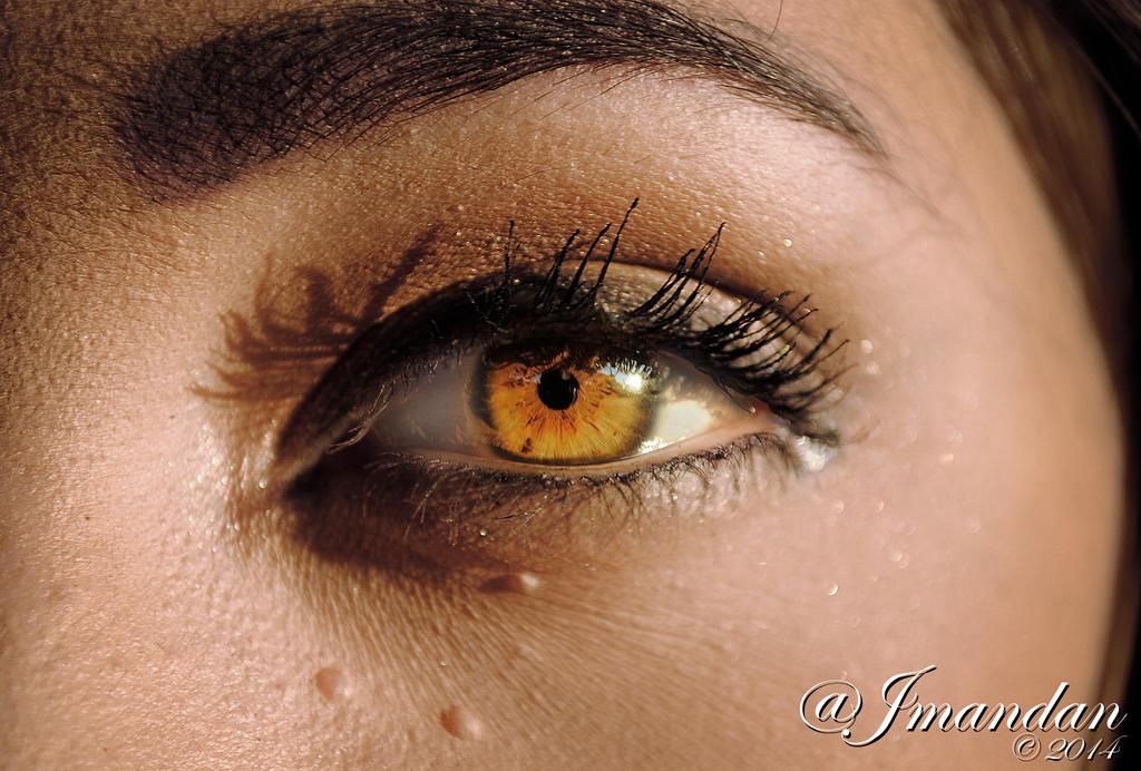 The Eyes Have It by Jmandan