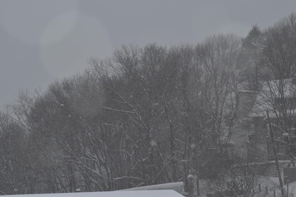 Winter by Hero-Ritsuka