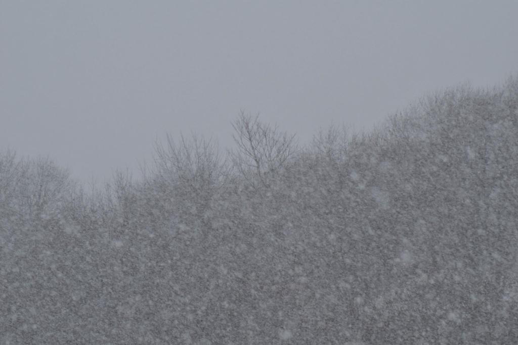 Winter storm by Hero-Ritsuka