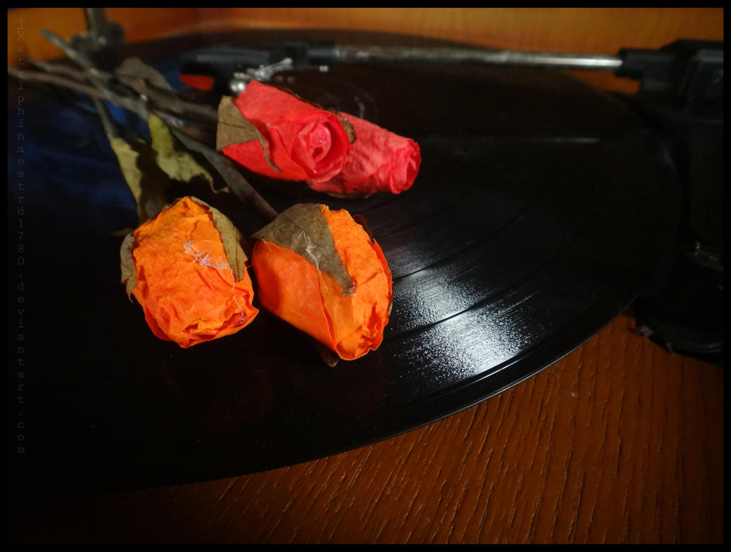 Vinyl And Roses For My Love