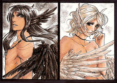 Black Raven||White Dove by Ameyama