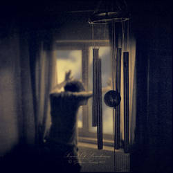 .: Sound of loneliness :. by GokhanKaraag