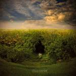 .: alice in wonderland :.