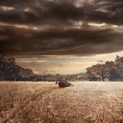 .: farm :. by GokhanKaraag