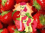 Strawberry Sunrise - Strawberries of Friendship
