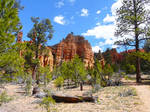 Red-Canyon-Trail2