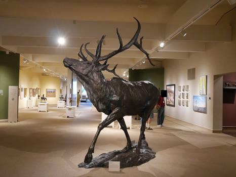 Wild-Bill-Cody-Museum