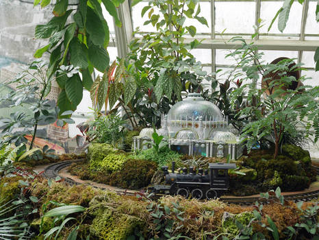 Conservatory-of-Flowers