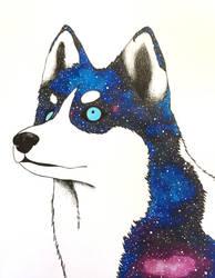 Galaxy Husky by Melanchollyanna