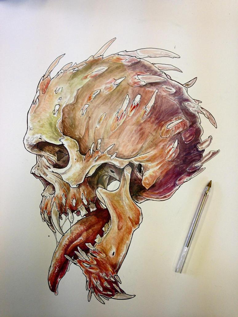 gouache skull study by agentcoleslaw