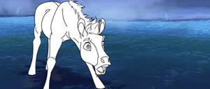 Foal Base #1