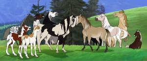 Custom Herd Batch #1