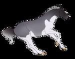 OTA Equine #2 | CLOSED