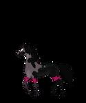 N5521 Cosmic Dust [Natural stallion]