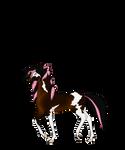 N6709 Caleb [natural stallion]