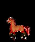 N5691 Nikolas [Novius Stakorn Stallion]