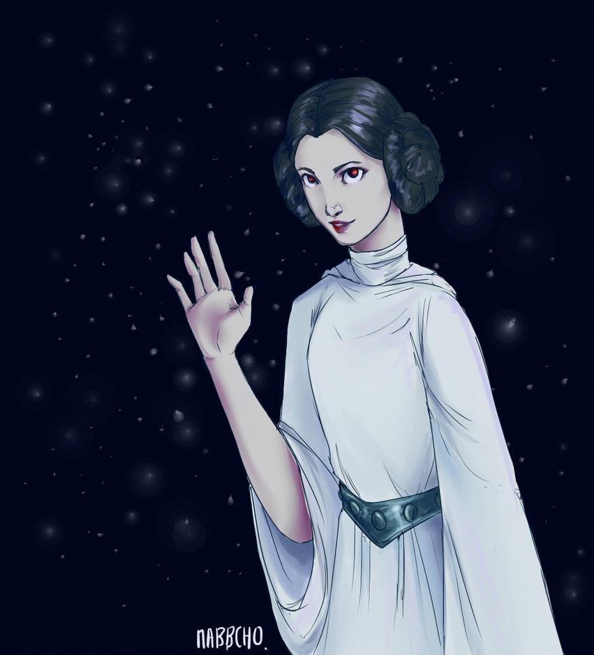 Princess Leia by Nabbcho