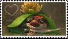 Buck Stamp 5!
