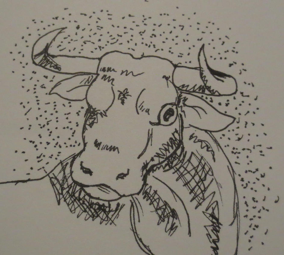 Bovine by Cerulean452