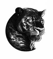 Black Panther by JustinWyatt