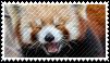 Red Panda .stamp. by ChainOfRain