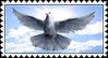 Christian Stamp: White Dove by Danicore
