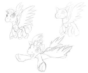 Pegasus Sketches