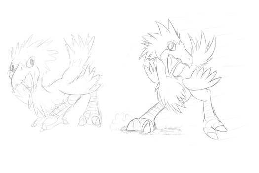 Chocobo Sketches