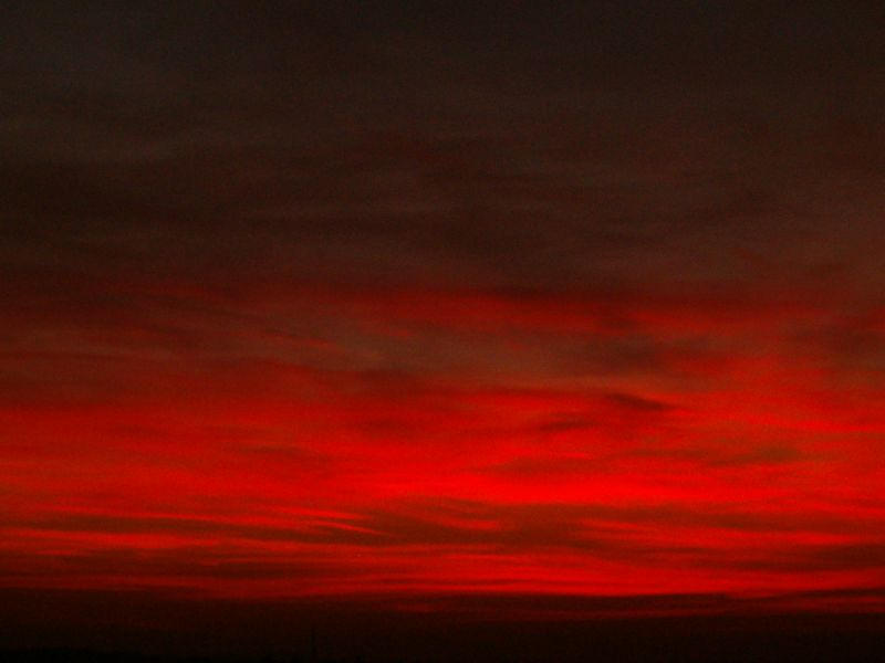 Red by Venea