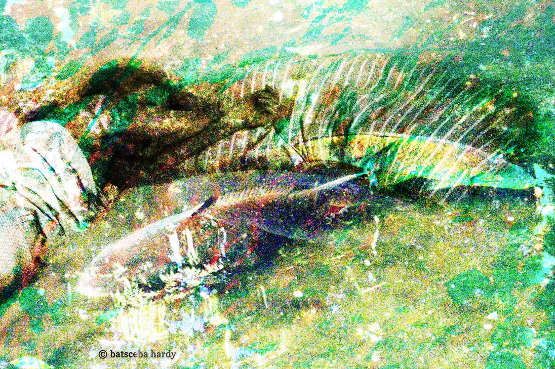 liquid dream by Batsceba