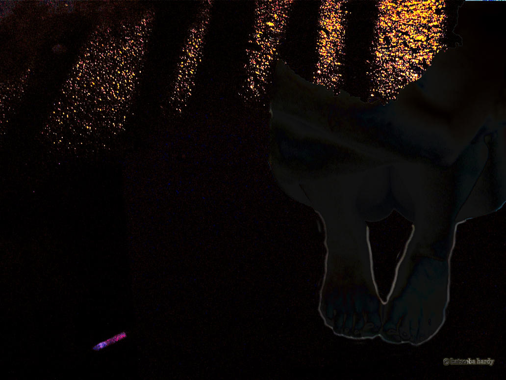 nocturnal 1 by Batsceba
