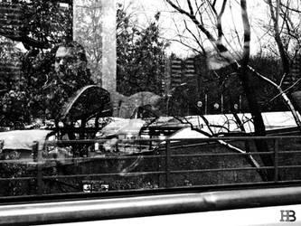 urban ghosts by Batsceba