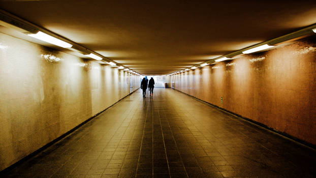 the golden tunnel